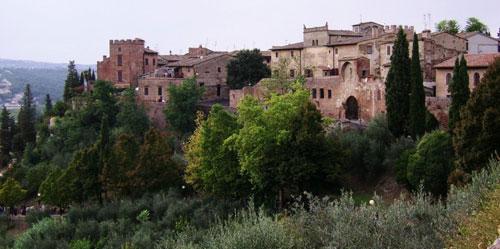 Olio di Oliva Certaldo Alto Firenze